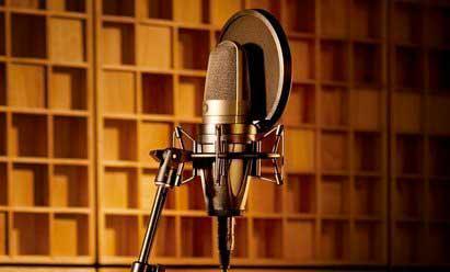 Micro voix