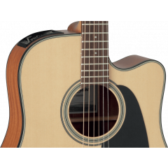 Takamine GD10CE-NS natural satin - Vue 2