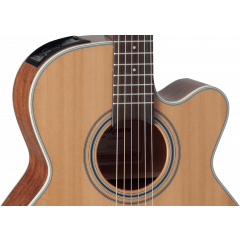 Takamine GN20CE-NS  natural satin - Vue 2