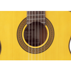 Takamine GC3CE-NAT natural - Vue 2