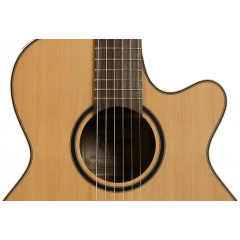 Takamine P3FCN natural satin - Vue 2