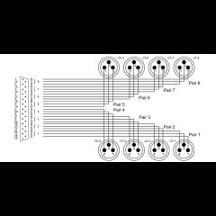 Cordial Câble interface sub-D/8 XLR mâles 3 m - Vue 2