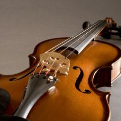 Fishman V-300 Concert pour violon - Vue 2