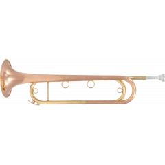Sml Paris Trompette de cavalerie Mib FTPC91-R - Vue 1