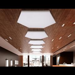 Primacoustic 2 panneaux de plafond hexagonaux à peindre 91 x 91 x 3,8 cm - Vue 1