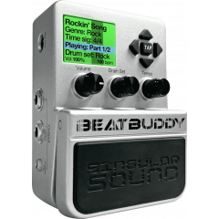 Singular Sound BeatBuddy - Vue 1