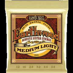 Ernie Ball Earthwood 80/20 bronze medium light 12-54 - Vue 1