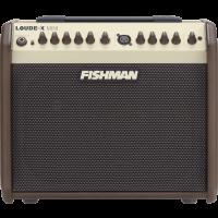 Fishman Loudbox Mini - Vue 2