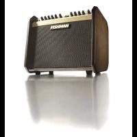 Fishman Loudbox Mini - Vue 6