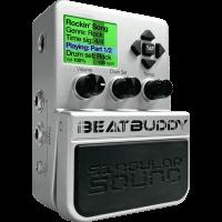 Singular Sound BeatBuddy - Vue 1
