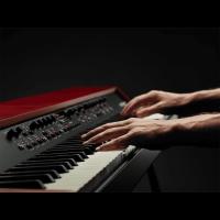 Nord Grand - Piano de scène 88 notes toucher lourd - Vue 4