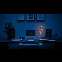 Novation Circuit Tracks - Vue 10