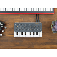 Modal Electronics SKULPTSynth SE - Vue 8