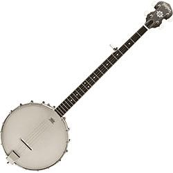 Guitare folk 12 cordes